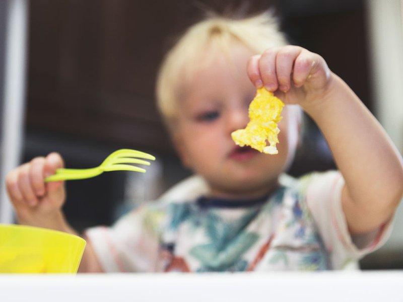 Kapan  Bayi Boleh Diberi Telur -3.jpg