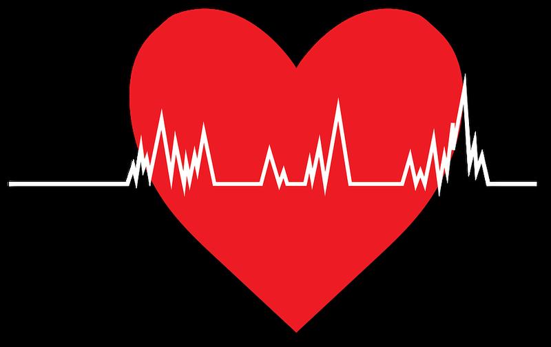 Kardiomiopati hipertrofi - cara memberi dukungan (Pixabay).png