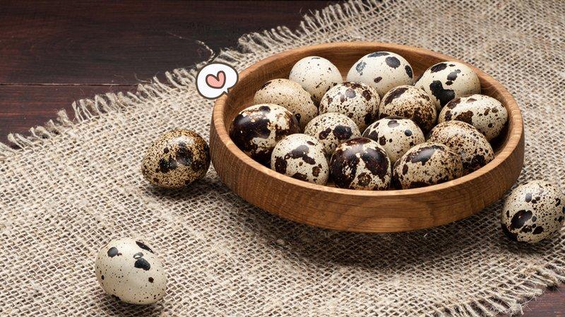 manfaat telur puyuh