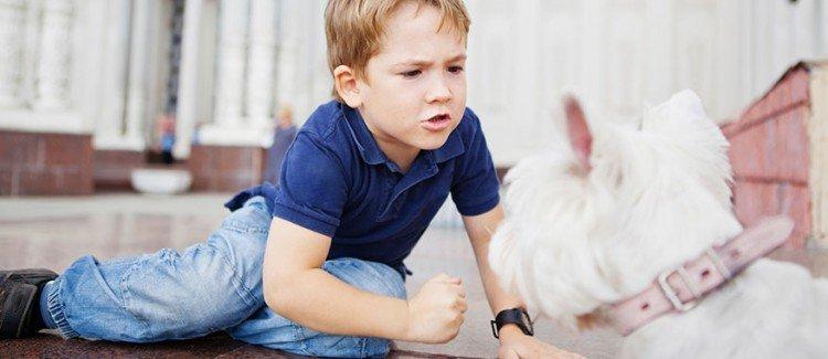 Kenapa Anak Suka Menyakiti Binatang 1.jpg