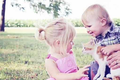 Kenapa Anak Suka Menyakiti Binatang 3.jpg