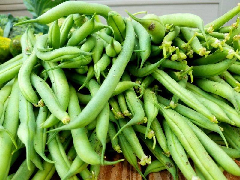 sayur rebus untuk balita