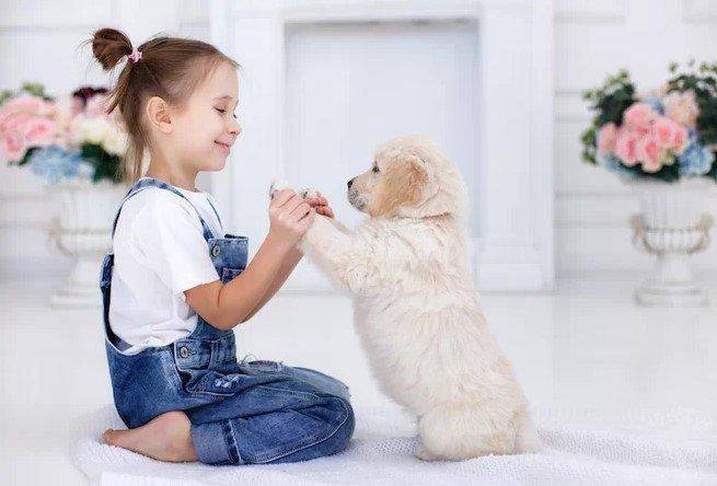 Manfaat Memelihara Hewan untuk Psikologis Anak 1.jpg