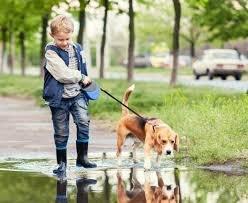 Manfaat Memelihara Hewan untuk Psikologis Anak 4.jpg