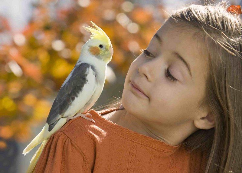 Manfaat Memelihara Hewan untuk Psikologis Anak 3.jpg