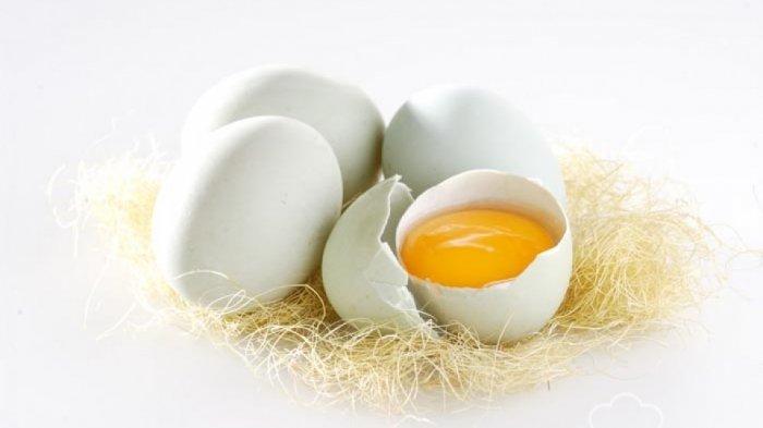 Manfaat Obat Kuat Alami Telur Bebek dan Spirte