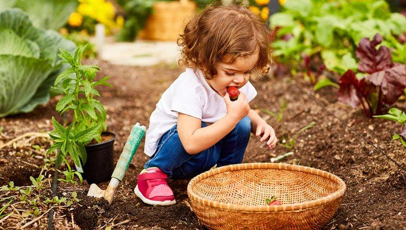 Mengupas Mitos dan Fakta Seputar Anak Tunggal 4.jpg