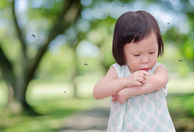 Moms Wajib Tahu! Waktu Paling Rentan Bagi Balita Terkena Penyakit Akibat Gigitan Nyamuk 3.jpg
