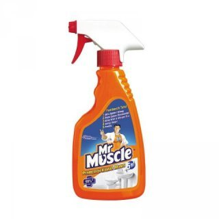 Mr. Muscle.jpg