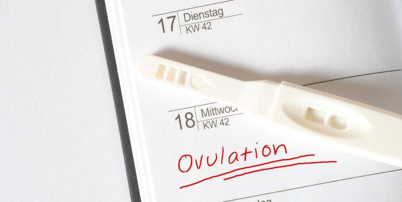 Ovulation kit.jpg