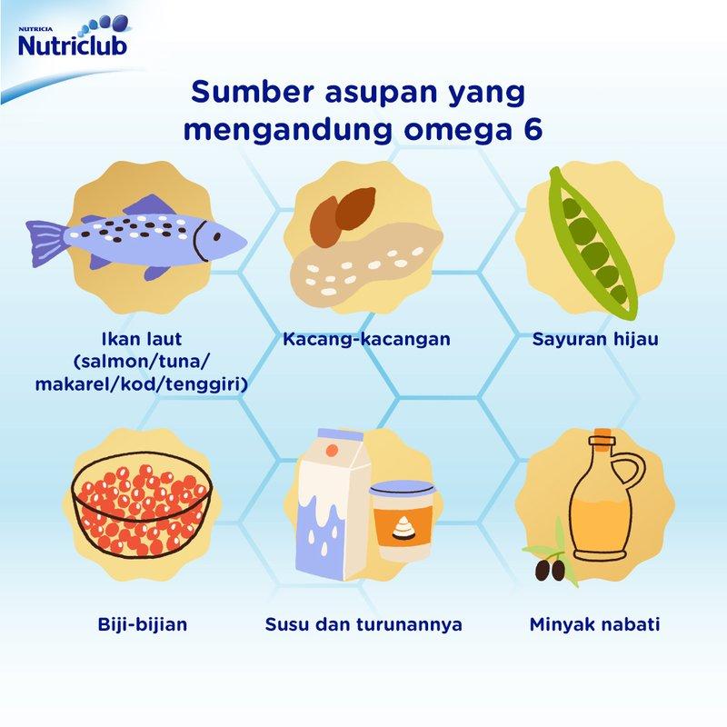 sumber omega 3