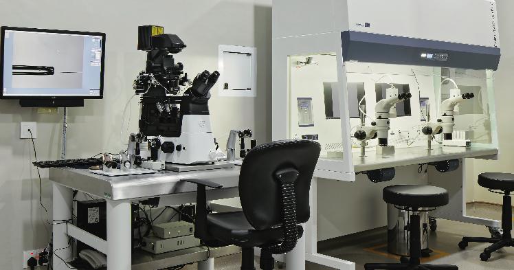Lab IVF Center.png