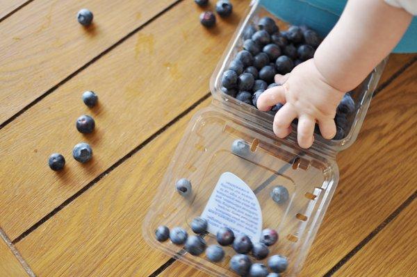 Selain Enak Ini 5 Manfaat Blueberry untuk Si Kecil -4.jpg