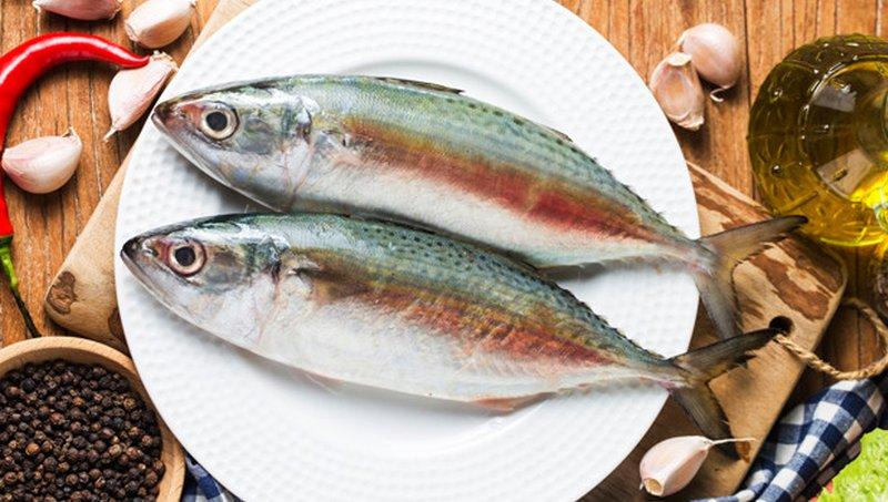 Selain Salmon, Ini 4 Jenis Ikan Untuk Meningkatkan Kecerdasan Anak 1.jpg