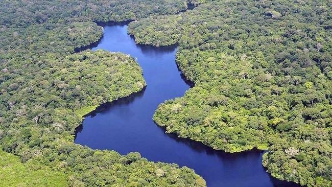 Sungai Amazon.jpg