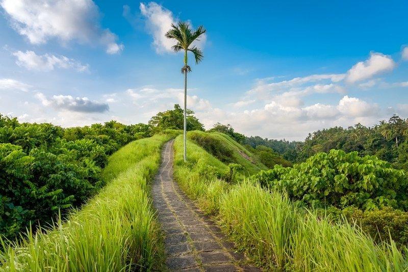 Hemat Ini 8 Tempat Wisata Di Bali Yang Gratis Berbagi