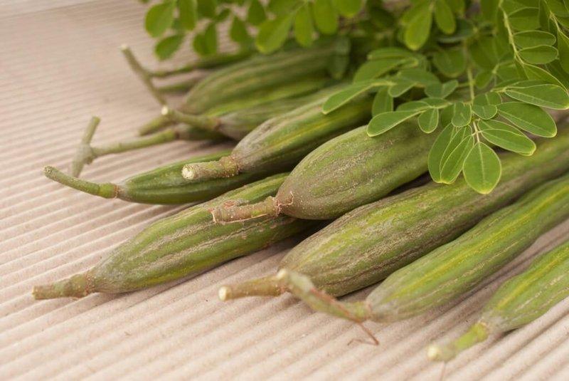 manfaat sayur klentang untuk menurunkan kolesterol