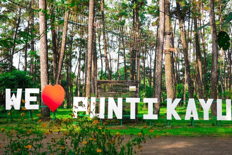 Wisata Alam Hutan Punti Kayu.jpeg