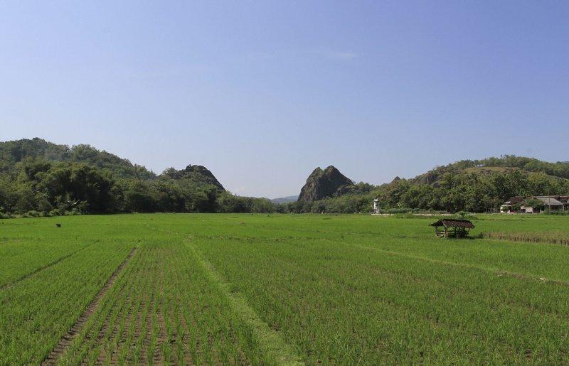 Wisata Gunung Sepikul Sukoharjo 2.jpg