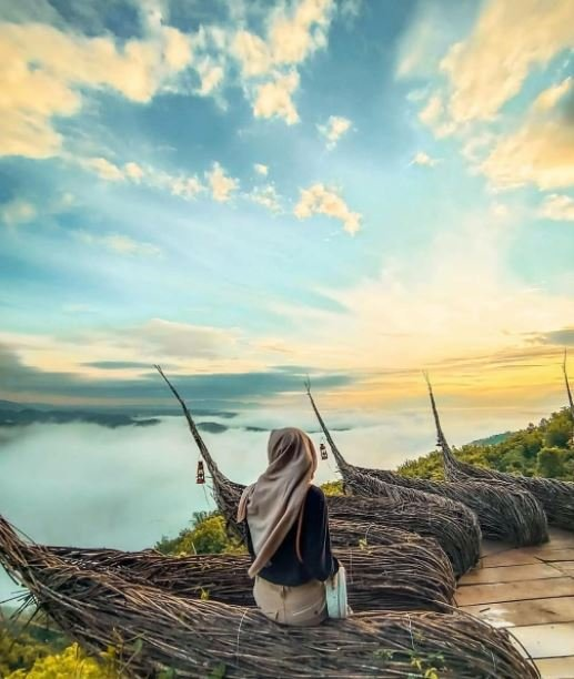 Wisata Pule Payung