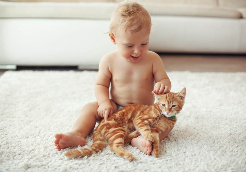 XX Alergi Pada Bayi yang Perlu Moms Kenali Gejalanya 3.jpg
