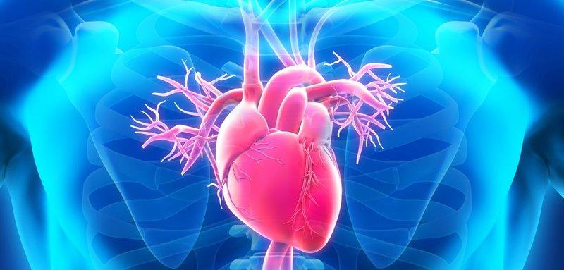 Kateterisasi Jantung, Moms Sudah Tahu? 13