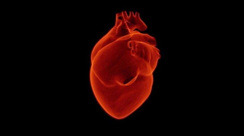 XX Kelainan Jantung Bawaan Pada Bayi, Moms Sudah Tahu? 15