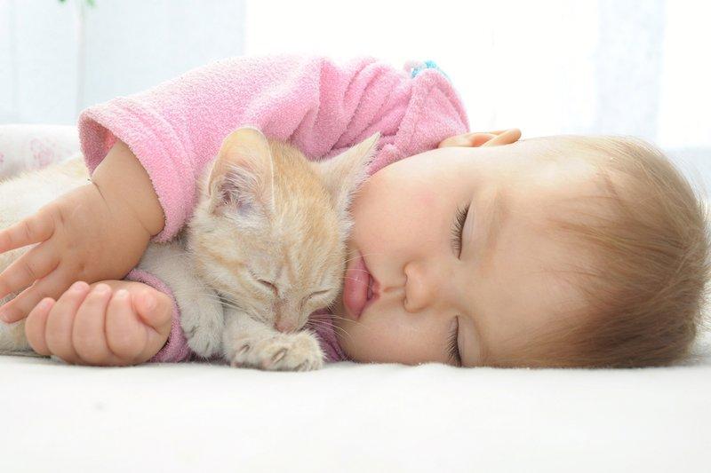 XX Manfaat Memiliki Hewan Peliharaan Untuk Bayi 2.jpg