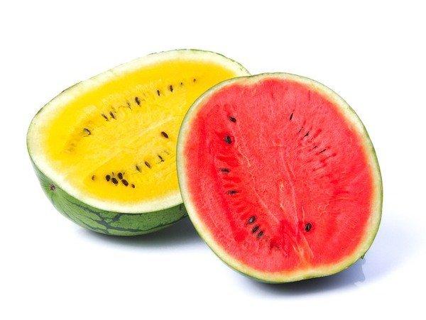 semangka merah vs semangka kuning
