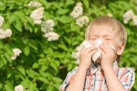 alergi anak.jpg