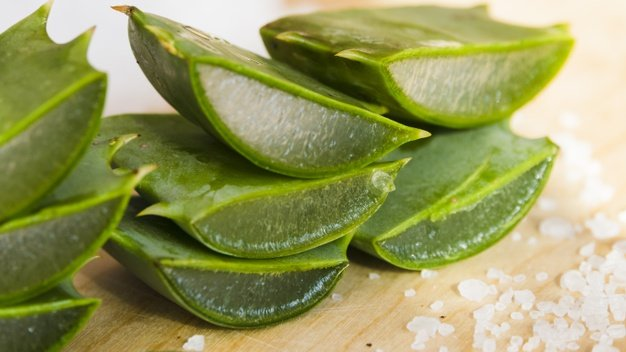 aloe-vera-leaves-beauty-treatment_23-2148173833.jpg