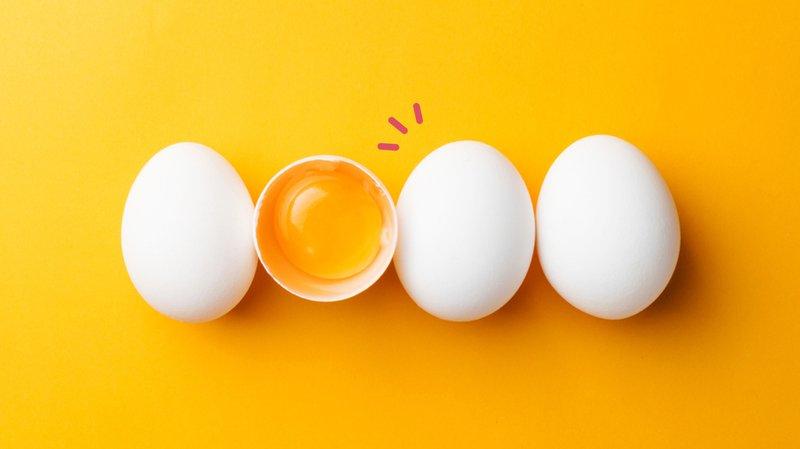 bolehkah-anak-makan-telur-setiap-hari-Hero.jpg
