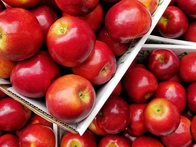 5 Makanan Berserat Untuk Lancarkan Pencernaan Patut Dikonsumsi