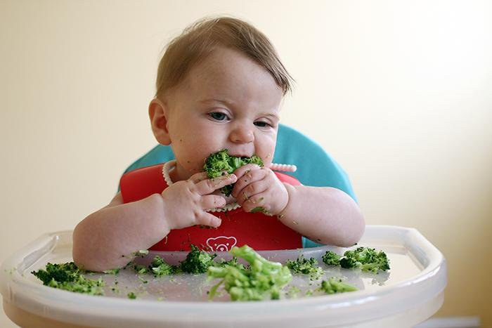 baby weaning day three broccoli