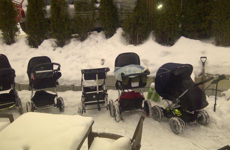 bayi di norwegia