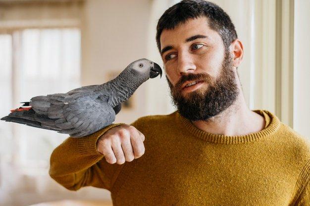 Burung senang berinteraksi
