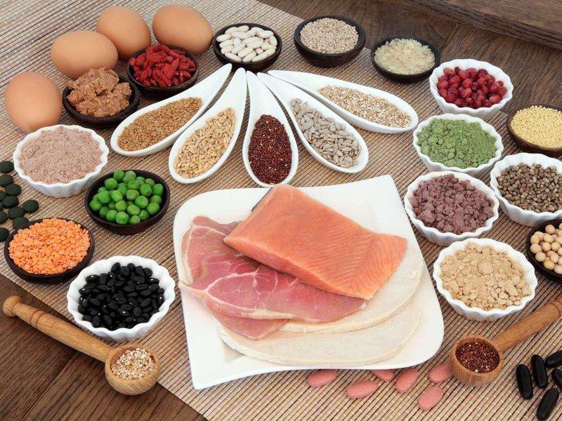 berbagai protein