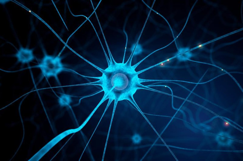 blue neuron on blue background