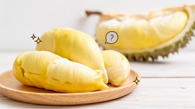 manfaat buah durian untuk kesehatan karena banyak nutrisi