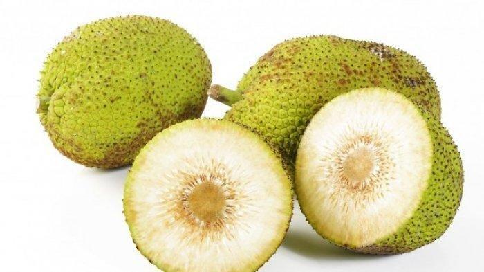 buah sukun.jpg