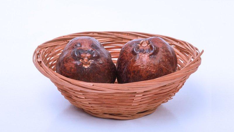 buah zuriat-1.jpg