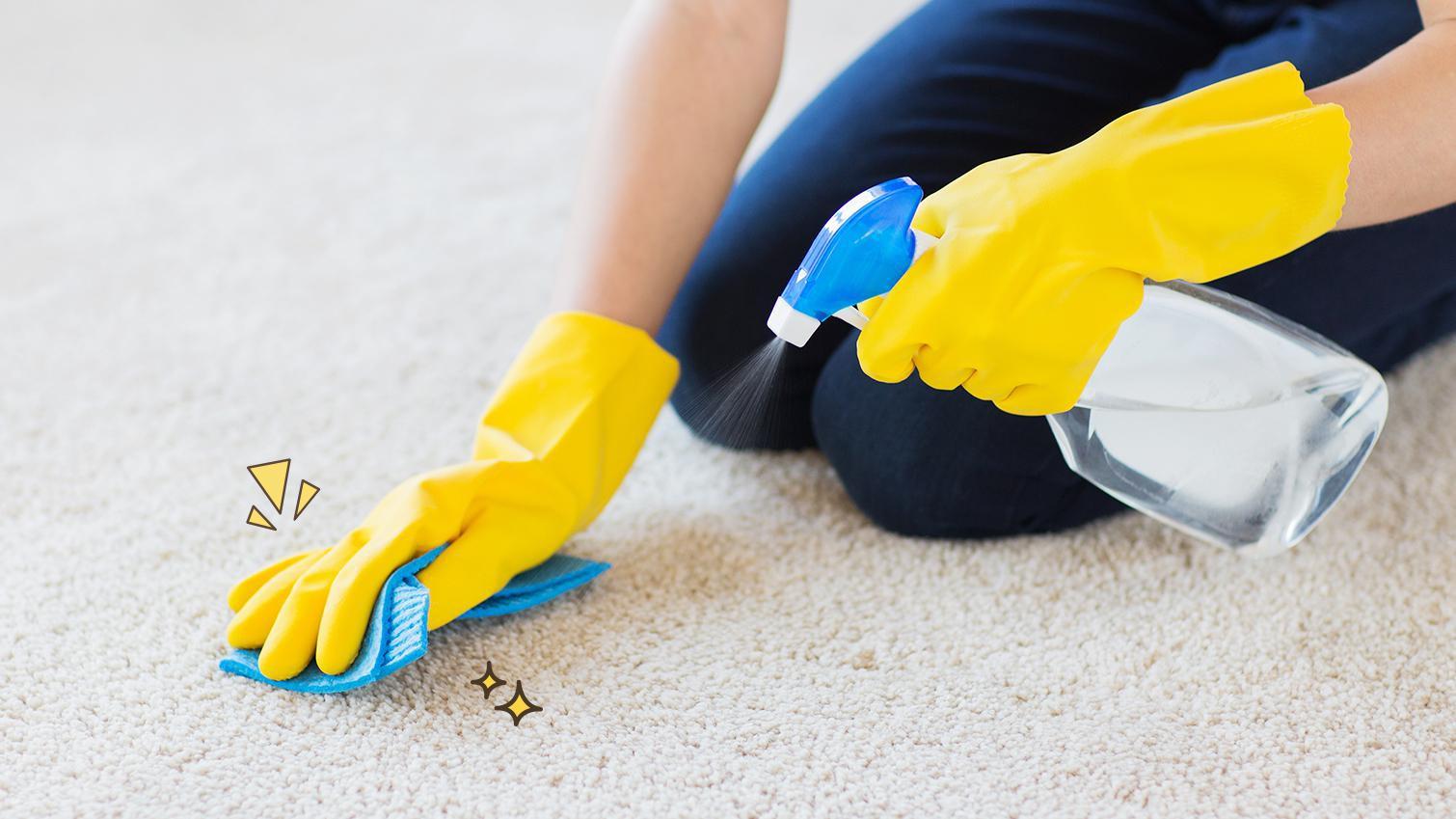 Begini Cara Membersihkan Karpet yang Benar agar Tidak Rusak