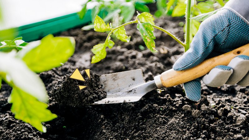 cara-menggemburkan-tanah.jpg