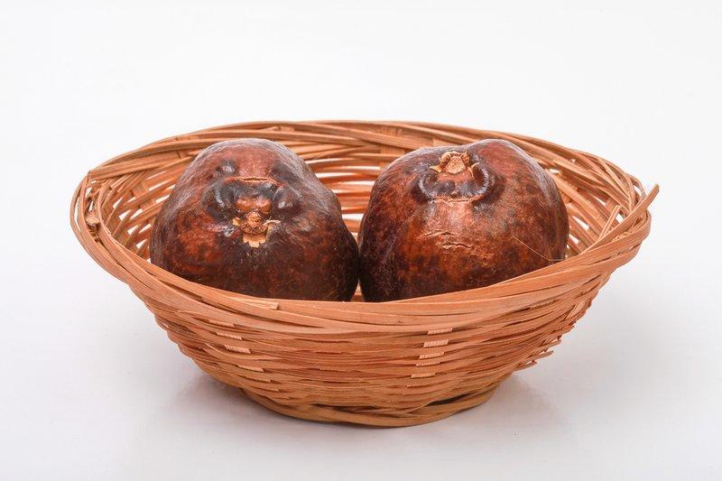 cara mengonsumsi buah zuriat agar cepat hamil.jpg