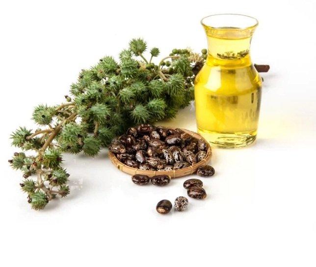 castor oil - facty.com.jpg
