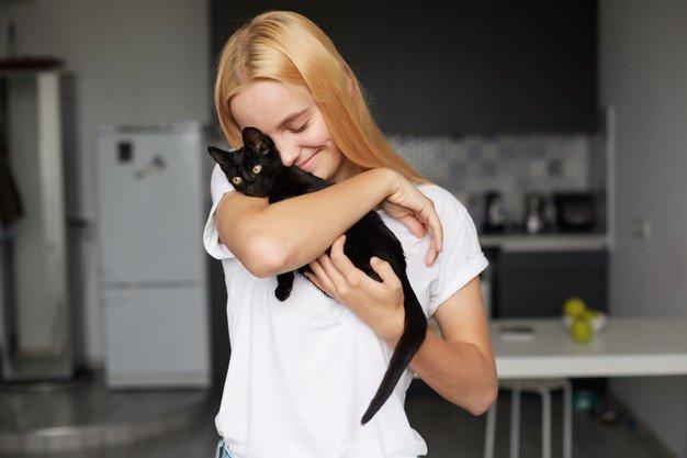 Kucing hitam bawa hoki