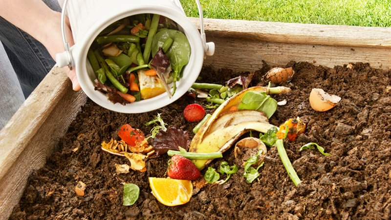 composting-stock.jpg