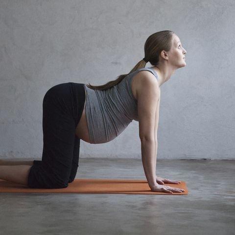 cow pose yoga.jpg