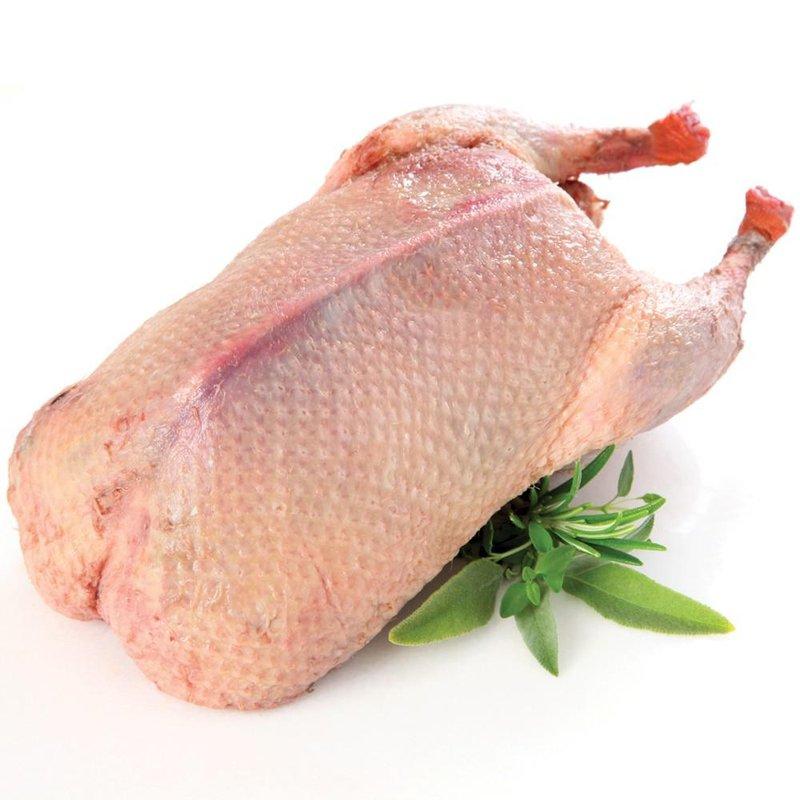 daging ayam vs daging bebek, mana yang lebih sehat 2