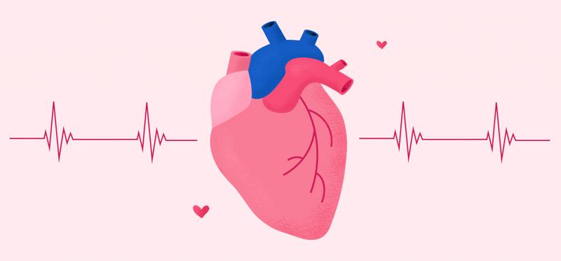 denyut-jantung.png